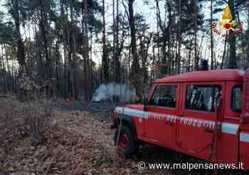 Fiamme a Sesto Calende nei boschi di Lentate, vigili del fuoco sul posto - malpensanews.it