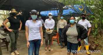 Primera Dama de Hatonuevo, gestiona equipo para producción de miel artesanal ante Cerrejón - La Guajira Hoy.com