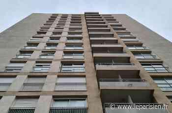 «C'est devenu un cauchemar» : à Joinville, un immeuble de quinze étages privé d'ascenseurs - Le Parisien