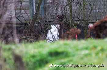 Tötungsdelikt in Ebersbach an der Fils: Leichnam des 26-Jährigen obduziert – weiterhin Zeugen gesucht - Stuttgarter Zeitung