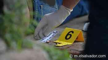 Hombres armados con fusiles y escopetas matan a ganadero en Suchitoto - elsalvador.com