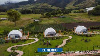 En Chinácota, sueños entre naturaleza, estrellas y café - El Tiempo