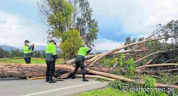 A punta de hachazos policías liberan tránsito en la vía Huancayo - Jauja - Diario Correo