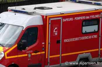 Sartrouville : il force le passage à niveau et se fait percuter par un train - Le Parisien