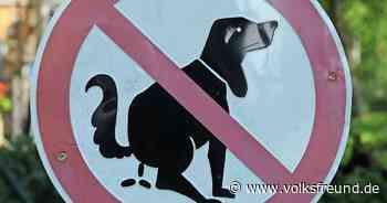 Wie hoch ist Bußgeld für Hundekot in der VG Wittlich-Land - Trierischer Volksfreund