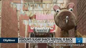 Sugar Shack Festival in Verdun - CityNews Montreal