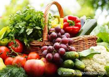 Mercato Contadino a San Vittore Olona: domenica l'appuntamento con i prodotti a chilometro zero - LegnanoNews
