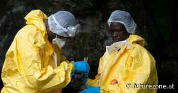 Ebola-Virus überlebte 5 Jahre in geheilter Person - futurezone.at
