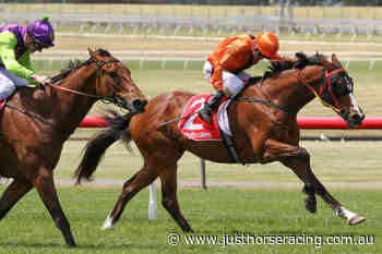 Bairnsdale Cup Field – 2021 - Just Horse Racing