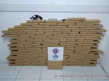 150kg de maconha são apreendidos pela Polícia Militar em Serrinha - Acorda Cidade