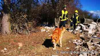 Schnüffelnasen häufig im Einsatz: Größte Rettungshundestaffel des Landes in Bad Sobernheim stationiert - Rhein-Zeitung