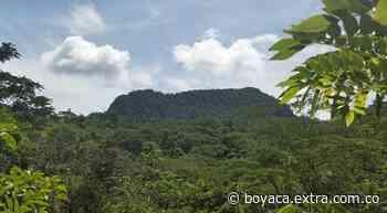 Misterioso deceso de líder comunal de Otanche y Puerto Boyacá   Boyacá - Extra Boyacá