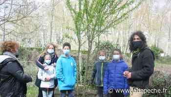 Verdun-sur-Garonne. Jeunes de la MJC et Colibris 82 se sont rencontrés au jardin - ladepeche.fr