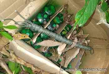 Hallan minas antipersonales que serían instaladas en cultivos de coca en Cartagena del Chairá - Alerta Tolima