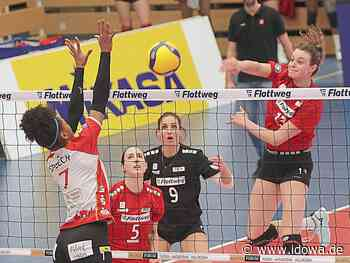 Zwischen Sommerpause und Halbfinale - Rote Raben Vilsbiburg vor einer echten Herkulesaufgabe - idowa