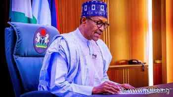 President Buhari appoints Isa-Dutse as ED, Board of IsDB - Pulse Nigeria