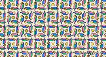 ¿Hallas las 2 guacamayas diferentes al resto en la imagen? Pon prueba tu visión con este reto viral - Diario Depor