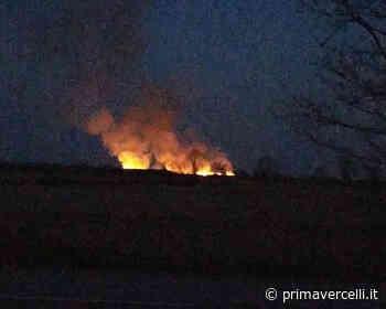 Incendio in atto tra Tricerro e Trino - Prima Vercelli