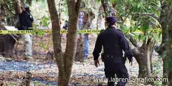 Asesinan a agricultor en Nahuizalco - La Prensa Grafica