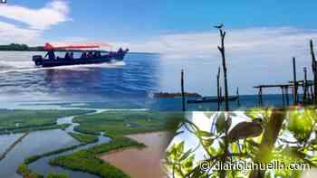 Bahía de Jiquilisco, un paraíso natural para visitar en Semana Santa - Diario La Huella
