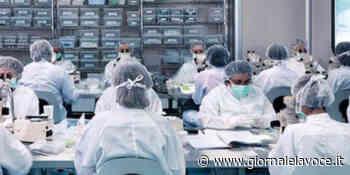 SALUGGIA. LivaNova disponibile a fare i vaccini - giornalelavoce