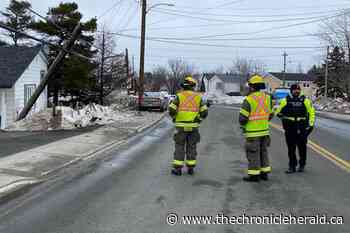 Man flees scene after striking, cracking utility pole in Mount Pearl - TheChronicleHerald.ca