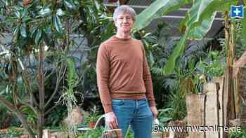 Blumenhalle wartet auf Öffnung: Wiesmoor blüht nur langsam auf - Nordwest-Zeitung