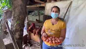 Mujeres campesinas de Paicol desarrollarán proyectos avícolas - Huila