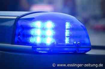 Bei Diebstahlversuch in Filderstadt: 18-jähriger Ladendieb verletzt Kioskbetreiber - esslinger-zeitung.de