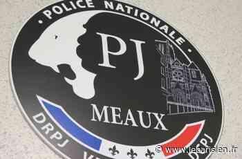 Saint-Thibault-des-Vignes : un jeune homme de 21 ans tué de deux coups de couteau - Le Parisien