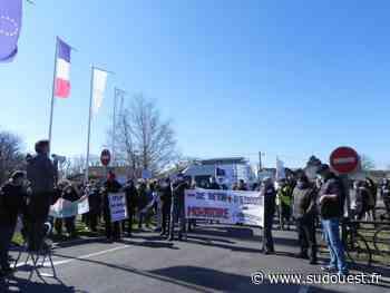 Audenge : une cinquantaine de personnes a la marche citoyenne, à l'appel du collectif du Braou - Sud Ouest