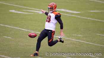 Bengals re-sign punter Kevin Huber