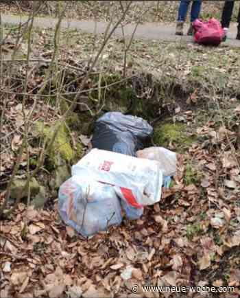 Hausmüll im Wald entsorgt - Täter gefasst » Aerzen - neue Woche