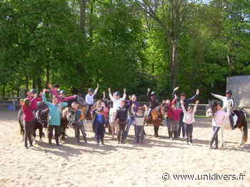 Super du poney au zoo de la Fleche farwest - Unidivers