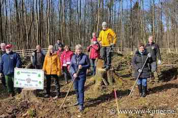 Bayern München-Fans pflanzen neuen Wald am Wildpark Bad Marienberg - WW-Kurier - Internetzeitung für den Westerwaldkreis