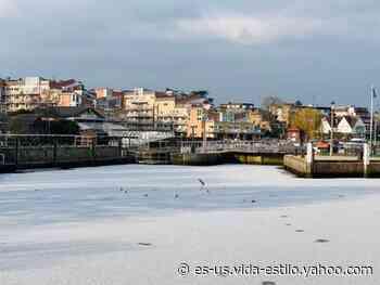 Río Támesis se congela en Londres tras histórico descenso de la temperatura en Reino Unido - Yahoo Style