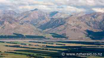 GO NZ: How to road trip from Nelson to Hanmer Springs via Lewis Pass - New Zealand Herald