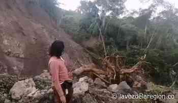 Inmenso deslizamiento de tierra genera preocupación en Elías y Timaná - Huila