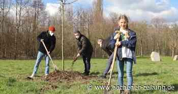 Zehnjährige aus Aldenhoven pflanz in ihrer Heimat Bäume: Lola will die Welt retten - Aachener Zeitung