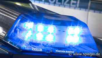 Rheinland-Pfalz: Mann ohne Fahrererlaubnis lässt offenbar 13-jährige Tochter ans Steuer - DER SPIEGEL