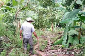 Ola invernal deja afectación severa en vías, veredas y cosechas de Tibacuy, Cundinamarca - Noticias Día a Día