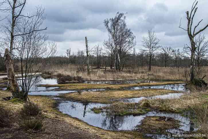 Oudste natuurreservaat De Zegge zingt zijn zwanenzang en loopt leeg