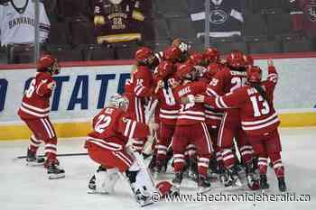 Kentville's Brette Pettet leads Wisconsin to NCAA women's hockey championship - TheChronicleHerald.ca