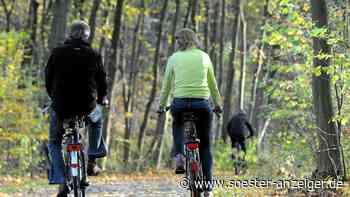 Die Gemeinde Bad Sassendorf saniert wichtige Radstrecken, auch die bröckelige Radler-Trasse durch den Rhodo... - Soester Anzeiger