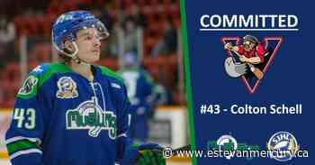 Lampman's Colton Schell commits to play college hockey next season - Estevan Mercury