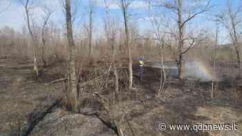 Crocetta del Montello, incendio alle Grave di Ciano: volontari impegnati nella bonifica dell'area - Qdpnews