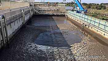 Agde : du côté de la station d'épuration, un grand lavage de printemps - Midi Libre