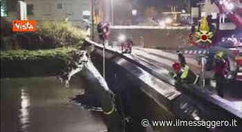 Tronco d'albero blocca il fiume a Torri di Quartesolo (VI), l'intervento dei Vigili del Fuoco - Il Messaggero