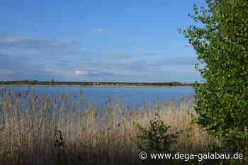Bitterfeld-Wolfen bewirbt sich für die LGS 2027 - DEGA GALABAU das Magazin für den Garten- und Landschaftsbau - DEGA GALABAU