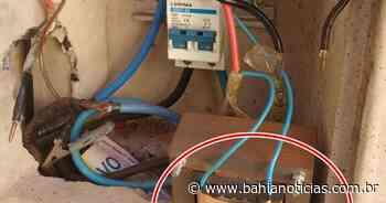 Operação flagra 'gatos' de energia em Santaluz e Cabaceiras do Paraguaçu; energia furtada daria para abastecer cidade em 1 mês - Bahia Notícias